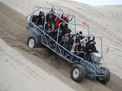 Giant Dune Buggy Pictures